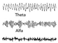 EEG golven